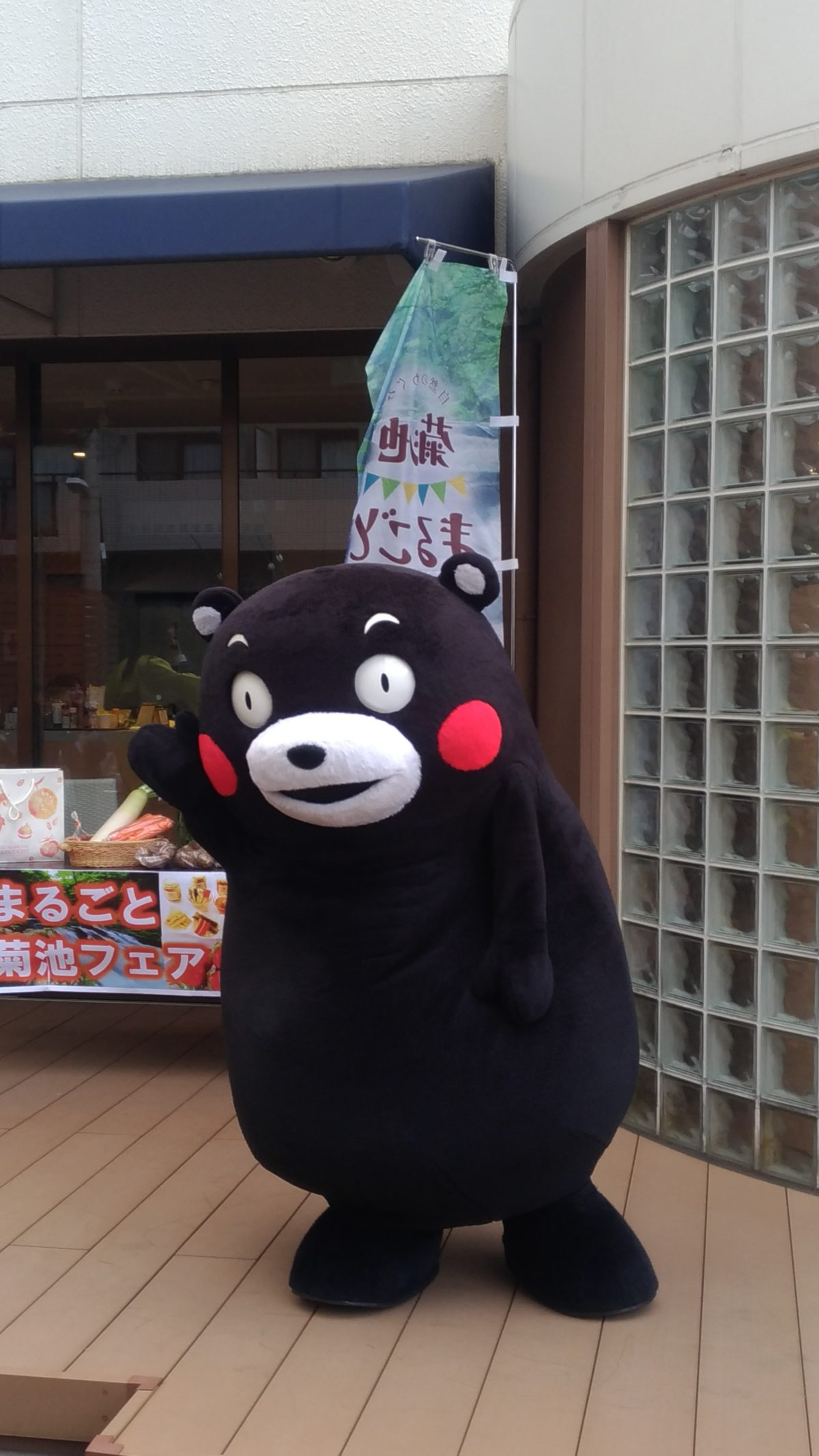 人気者!!(くまモン登場)